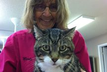 FAM Clients / Pics of our furry pet clients that visit us at our clinic.