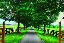 Country Drive Ways  / by Angie Graham