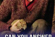 Harry Potter quizzen