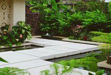 Diseño entrada a casas unidafamiliares / Entrada casa unifamiliar