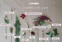 Svadobne kytice, kvety