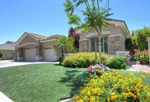 Tempe AZ / Tempe AZ Ramblings and Real Estate