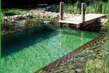 Natural Pools: Biologically-Filtered