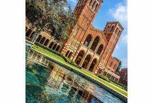 #SceneatUCLA / by UCLA
