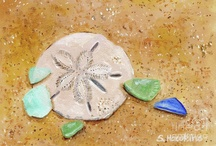 mood. beach glass and sand dollars. / by Cardinal House