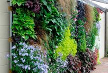 Lovely Vertical Gardens
