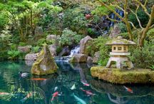 Japanese Garden / Japanese Garden : Come and Follow!