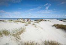Natur, Küste, Meer / Die Upstalsboom Natur, Küste, Meer Pinnwand, angelehnt an den Blog.