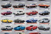 My Cars 311