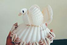 seashell own creation