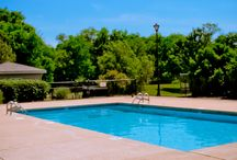 Spring Hill apartments for rent / The best apartments to rent in Spring Hill, TN!