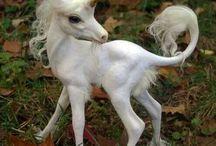 unicorn addiction / by Klara McDonnell