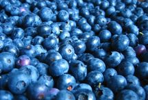 FOOD • Blueberry