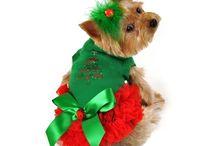 CHRISTMAS DOGGY DRESS UP