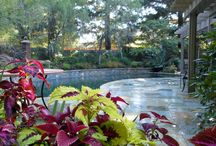 Client Testimonials / Majestic Builders/ Robert Terry Client Testimonials  Dear Robert, Glenn and I would like to share our appreciation for all your efforts on our backyard project and say how delighted we are with the finished product provided by Majestic Builders...  http://www.majesticbuilders-ca.com/sacramento-pool-designer-testimonials-1.htm