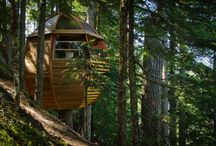 Tree Houses, Greenhouses. Potting Sheds / Creative ideas for Utility buildings