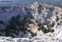 Sardegna : monumenti naturali