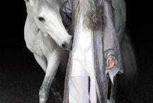 Horses - Cavalli & Equini