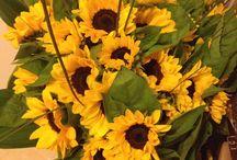 fiori / girasoli...e altro!!