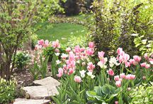 Outdoor&garden