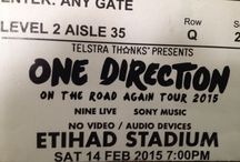 The one direction concert