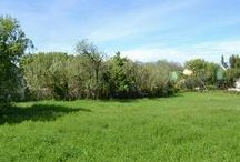 properties in Riebeek Valley