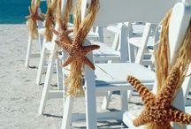 Beach themes starfish  / Starfish ceremonial decor
