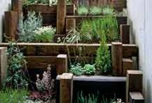 Green Landscaping / How to have a Green garden - Article Research