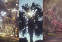 Southern Life