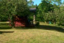 Zen River Garden