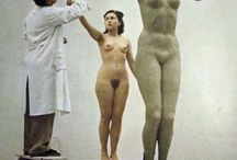 body and sculptures