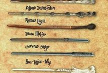 The Wand chooses the Wizard,Mr.Potter
