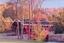Amish Barns and Bridges