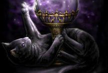 Chats, divination et magie