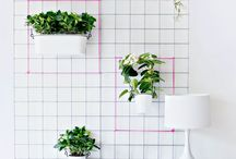 Green Wall Project