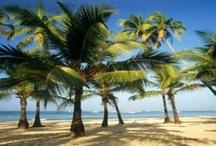 Beaches in Goa! / Wonderful beaches in amazing Goa!