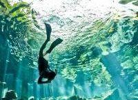 Cave Diving / by Susan Hoyt