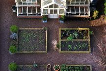 Greenhouse & Garden Plans / Inspirations for our future greenhouse made out of french doors and old windows, with a vegetable garden front. / by Crystal Villela Melendez
