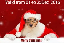 Buy Gift For Your Pet at This christmas-4petneeds