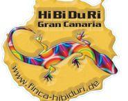 Finca HiBiDuRi/Villa de la Palmerita Gran Canaria / Kleine Familiär geführte Finca im Süden Gran Canaria´s in Maspalomas. Etwas abseits vom Touristentrubel für absolute Ruhe und Entspannung.
