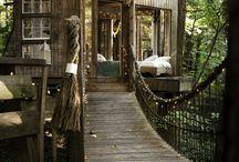 treeshouse...