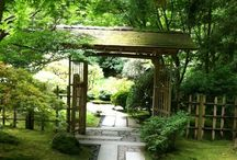Japanese Gardens / by Matt Townsend