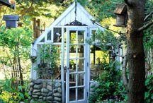 Ideas for my greenhouse / by Christe Clingan Hargrove