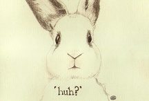 Bunny / by Karen Froese Spotts