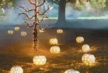 Halloween Wedding Decor / by Linda Heck