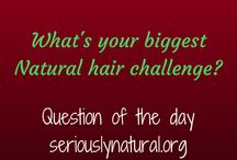 Question of the Day! / I love questions about...everything!  I especially love them about hair or specifically natural hair.