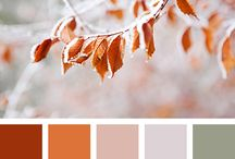 Favorite Color Pallets / Colors in awesome  combinations !