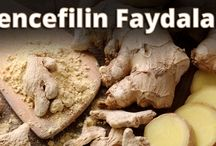 Zencefilin Faydaları