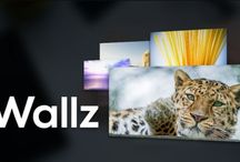 Wallz Pro: Wallpaper APP v1.1.8