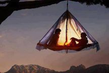 camp in a tree!!